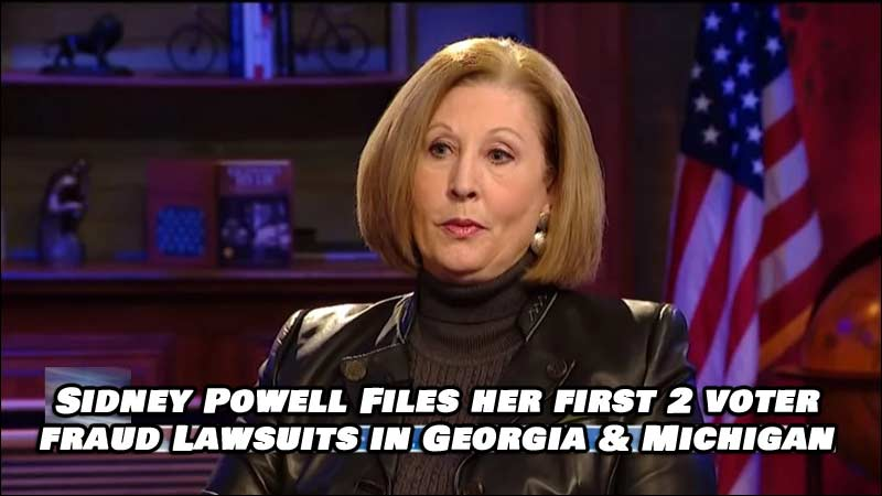 Sidney Powell Files 2 Voter Fraud Lawsuits in Georgia and Michigan! Read the complaints here.