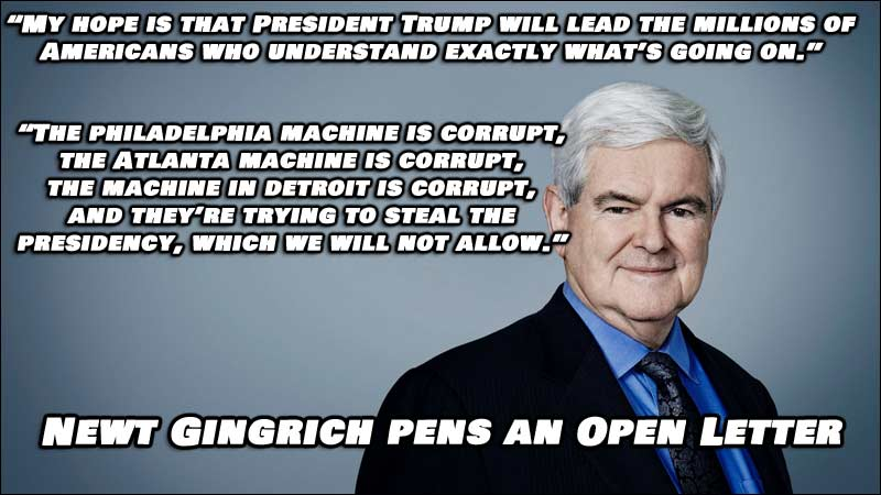Open Letter from Newt Gingrich about 2020 Presidential Election (click for full size)