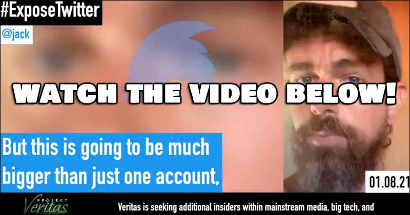 ExposeTwitter - Project Veritas James O'Keefe Drop Secretly Recorded Twitter CEO Video